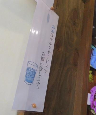 shoyu-aoki31.jpg