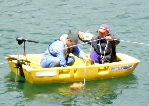 02 シュロ皮についた卵角合ダム湖へ放流 (300x213)