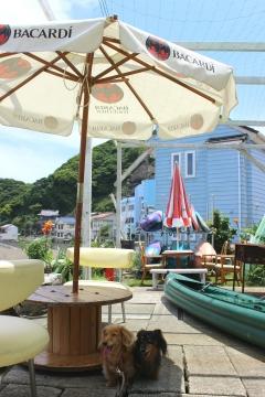 R02062107浜茶屋太海