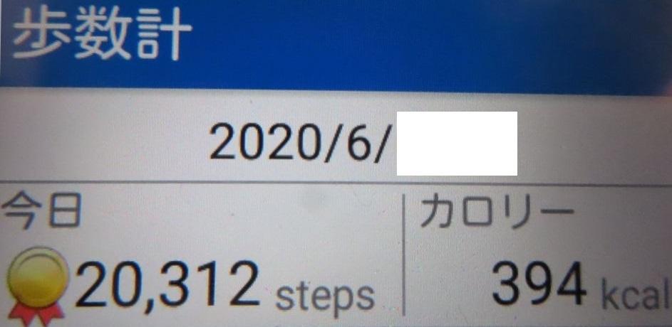 202006251544381df.jpg