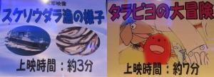 めんたい19