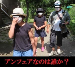 磐田昆虫2