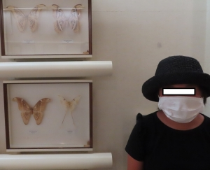 磐田昆虫26
