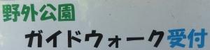 竜洋昆虫2回21