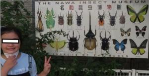 名和昆虫0