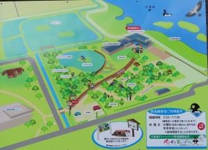 宍道湖グリーン4