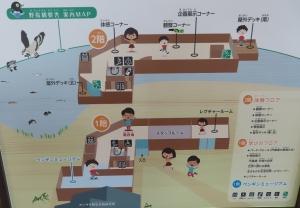 宍道湖グリーン11