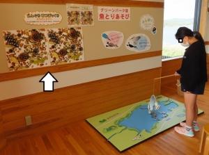 宍道湖グリーン25