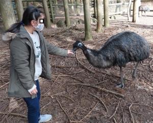 富士花鳥展示29