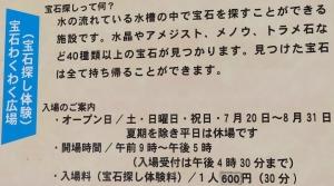 奇石博物初9-1