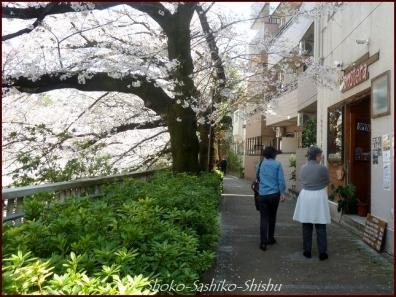 20200327 神田川 9  桜咲く