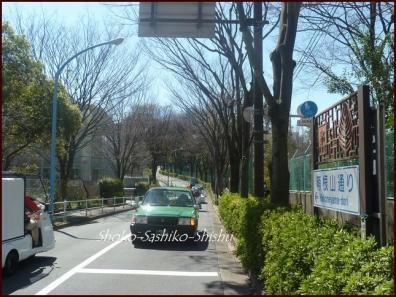 20200331 箱根山まで 4  箱根山