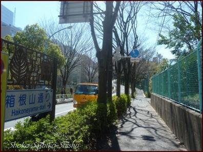 20200404 下山 9 箱根山