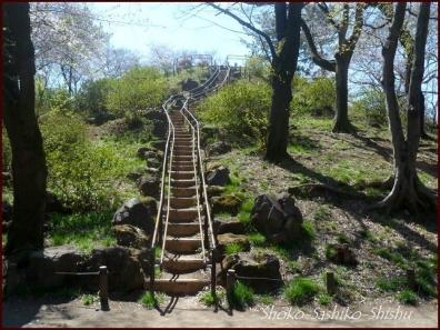 20200404 頂上まで 8 箱根山