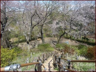 20200404 頂上まで 9 箱根山