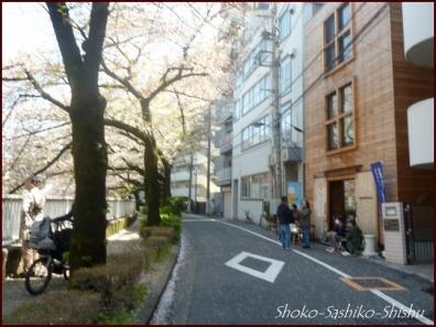 20200409 桜 14  桜散る
