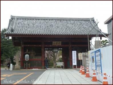 20200416 観音堂・本堂まで 1 護国寺