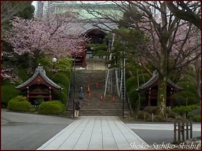 20200416 観音堂・本堂まで 8 護国寺