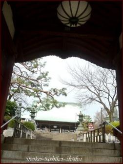 20200416 観音堂・本堂まで 12 護国寺