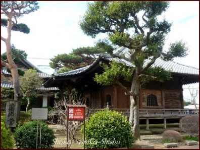 20200416 本堂から 1  護国寺