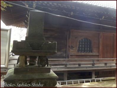 20200416 本堂から 5  護国寺