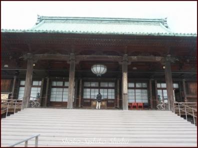 20200416 本堂から 7  護国寺