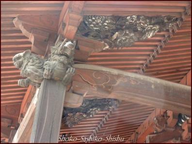 20200416 本堂から 9  護国寺