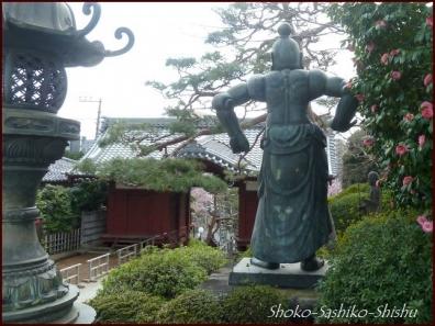 20200416 本堂から 10  護国寺