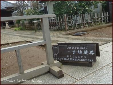20200416 本堂から 11  護国寺