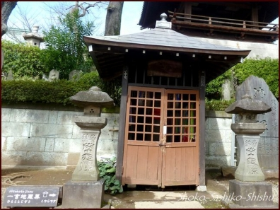 20200422 本堂まで 7  護国寺