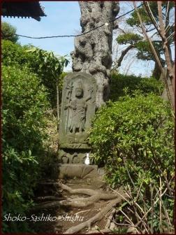 20200422 本堂まで 9  護国寺