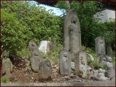20200422 本堂まで 12  護国寺