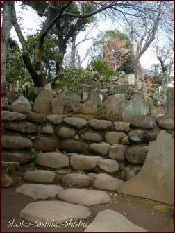 20200426 富士登山 1  護国寺富士