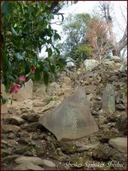 20200426 富士登山 8  護国寺富士
