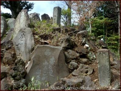 20200426 富士登山 10  護国寺富士