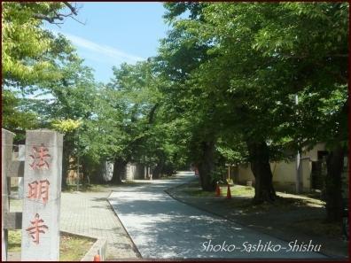 20200722 観静院  1   雑司ヶ谷七福神
