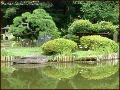 20201003 細川庭園 6  初秋