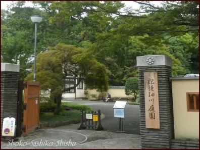 20201003 細川庭園 14  初秋