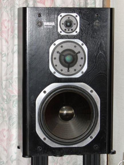 NS-100X 01