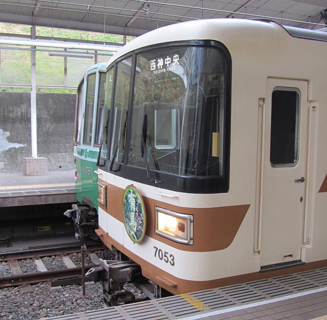 200529sh03.jpg