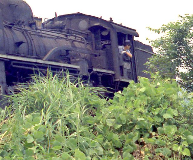 200624kk15.jpg