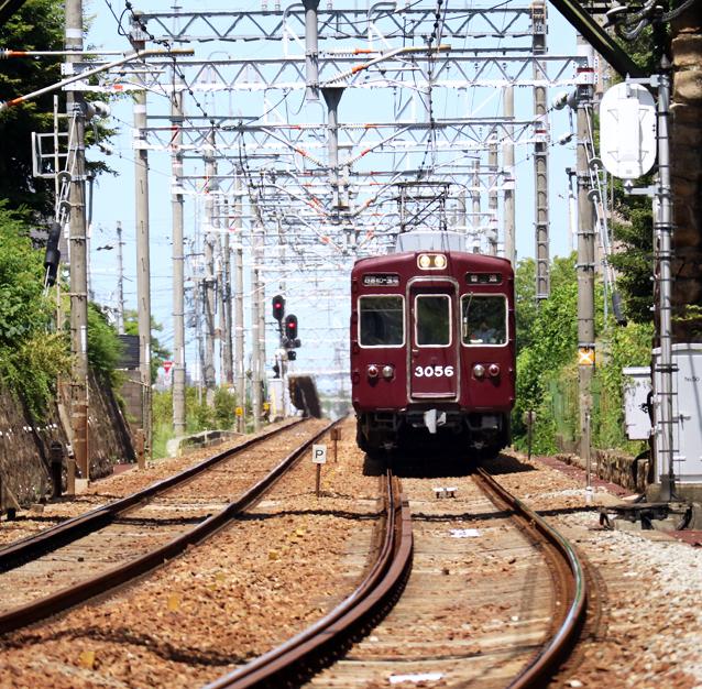 2007193S05.jpg