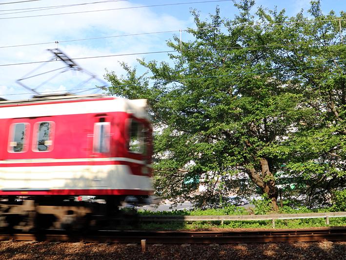200805n13.jpg