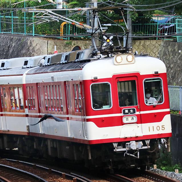200805n22.jpg