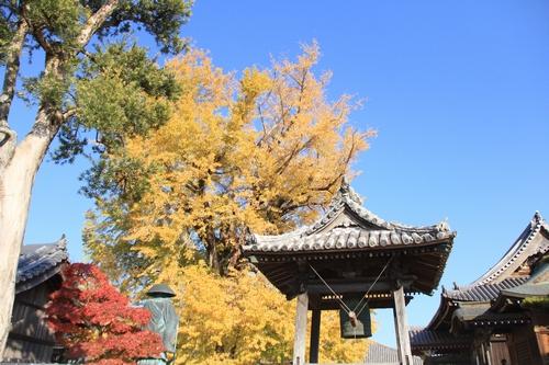 jizouji-1207-8786.jpg