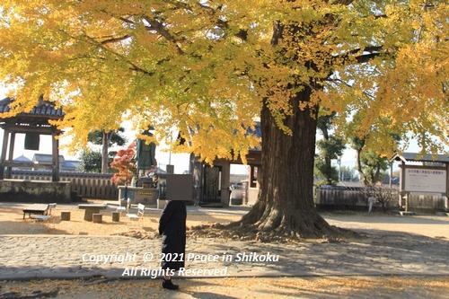 jizouji-1207-8791.jpg