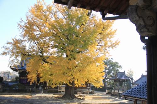 jizouji-1207-8795.jpg