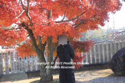jizouji-1207-8800.jpg