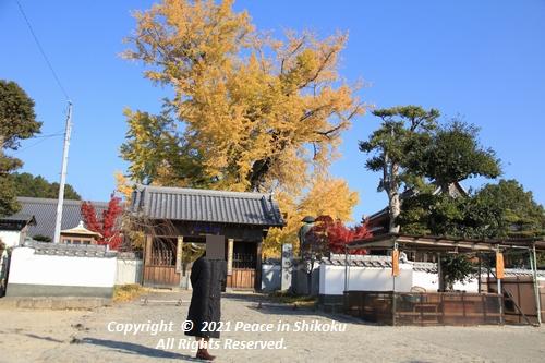 jizouji-1207-8806.jpg