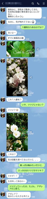 060401_20200424_02_M-LINE.jpg